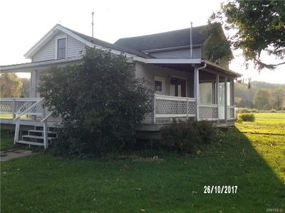 Eagle Single Family Home A-Active: 4092 Route 39 Highway