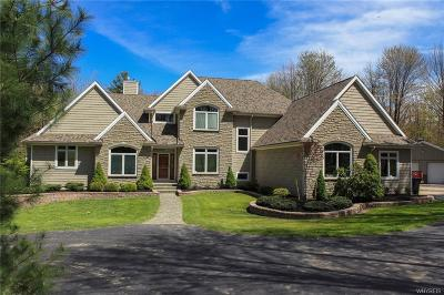 Boston Single Family Home A-Active: 8913 Deer Run Road