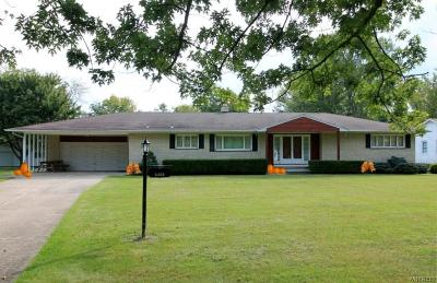 Wheatfield Single Family Home A-Active: 6303 Milleville Circle