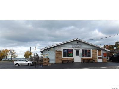 Commercial A-Active: 9566 Lake Shore Road