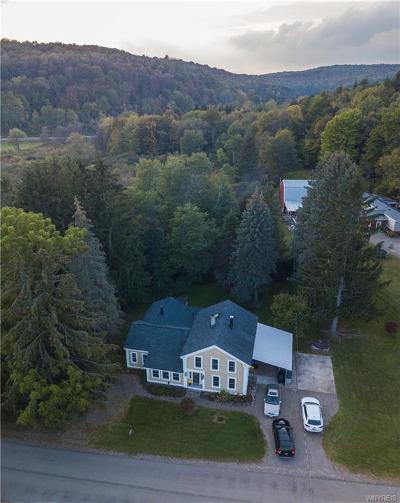 Ellicottville Single Family Home A-Active: 8533 Hebdon Road