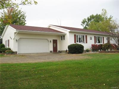 Arcade Single Family Home C-Continue Show: 6509 Route 98