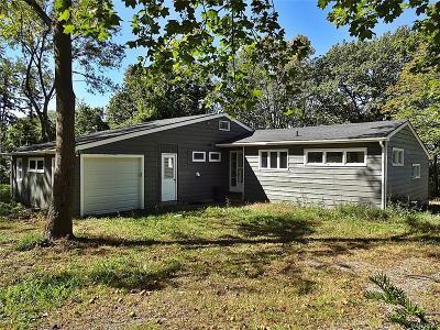Lewiston Single Family Home A-Active: 1045 Escarpment Drive