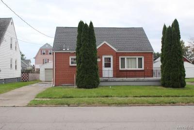 Lackawanna Single Family Home A-Active: 99 Elkhart Street