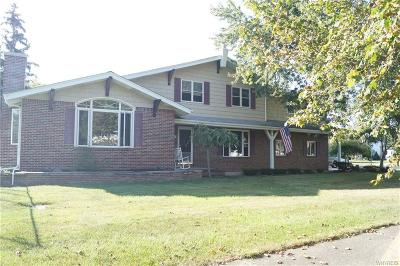 Grand Island Single Family Home A-Active: 136 Morningside Dr