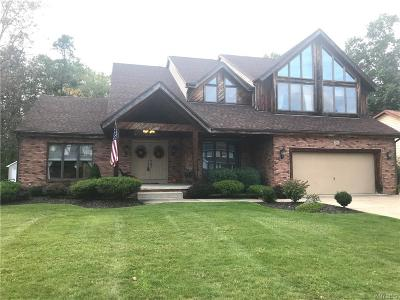 Grand Island Single Family Home A-Active: 216 Fairview Court