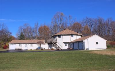 Orchard Park Single Family Home A-Active: 5191 Chestnut Ridge Road