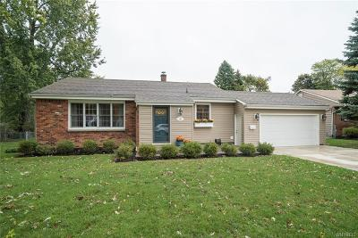 Amherst Single Family Home A-Active: 124 Cadman Drive