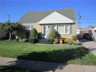 Cheektowaga Single Family Home A-Active: 120 Nadine Drive