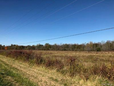Residential Lots & Land A-Active: Cohocton Road