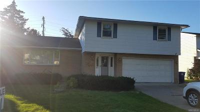 Amherst Single Family Home A-Active: 89 Sundown