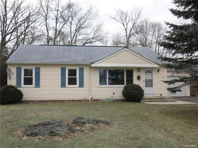 Grand Island Single Family Home A-Active: 3325 Sandy Beach Road