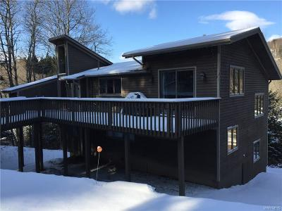 Ellicottville Single Family Home A-Active: 30 Holimont Avenue