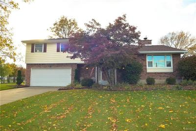 Grand Island Single Family Home A-Active: 670 East River Road