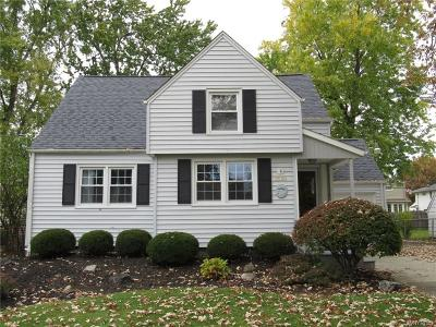 Grand Island Single Family Home A-Active: 1591 Love Road