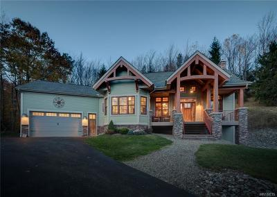 Mansfield Single Family Home A-Active: 6652 Plum Creek Road
