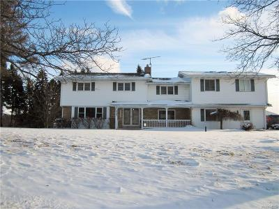 Orchard Park Single Family Home A-Active: 6567 Powers Road