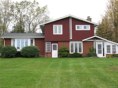 Grand Island Single Family Home A-Active: 875 West River Road