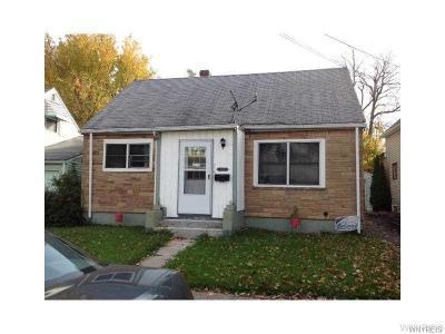 Buffalo Single Family Home A-Active: 245 Courtland Avenue