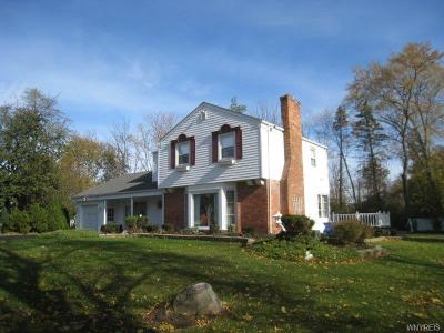 Lewiston Single Family Home A-Active: 4235 River Road