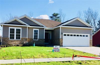 West Seneca Single Family Home A-Active: 96 Robin Lane