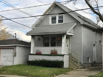Buffalo Single Family Home A-Active: 281 Roslyn Street
