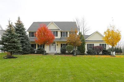 Wheatfield Single Family Home A-Active: 6751 Ciara Court