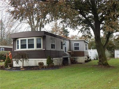 Single Family Home A-Active: 17 Collegeview Drive
