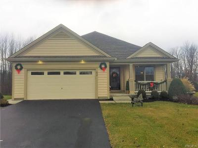 Elma Single Family Home A-Active: 92 Springbrook Shores Drive