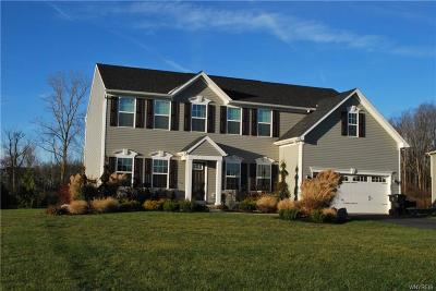 Orchard Park Single Family Home A-Active: 67 Hilltowne Drive