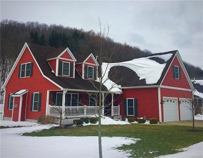 Ellicottville Single Family Home A-Active: 3 Elk Creek Drive