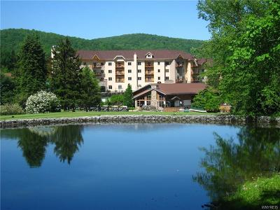 Ellicottville Condo/Townhouse A-Active: 6557 Holiday Valley Road #306/308-