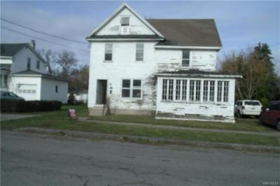 Orleans County Multi Family 2-4 A-Active: 111 Stork Street
