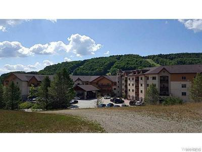 Ellicottville Condo/Townhouse A-Active: 6557 Holiday Valley Rd. 310/312-1 Tamarack Clb