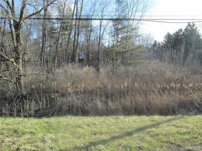 Orchard Park Residential Lots & Land U-Under Contract: 4995 Ellicott Road