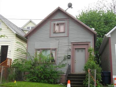Buffalo Single Family Home A-Active: 203 Dodge Street