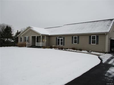 Livingston County Single Family Home A-Active: 4593 Reservoir Road