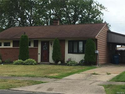 Grand Island Single Family Home A-Active: 88 Riverdale Drive