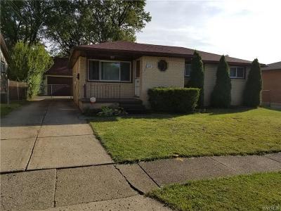 Lackawanna Single Family Home A-Active: 149 Edison Street