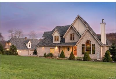 Ellicottville Single Family Home A-Active: 6836 Dooley Road