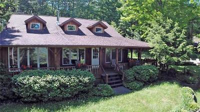 Ellicottville Single Family Home U-Under Contract: 7285 Irish Hill Road