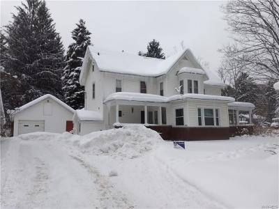 Ellicottville Single Family Home A-Active: 64 Elizabeth Street