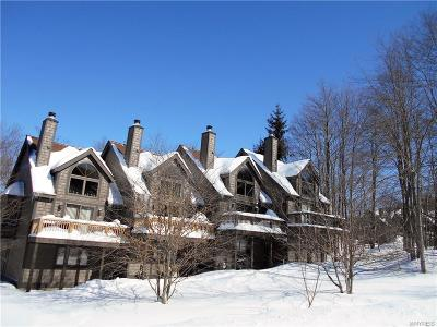 Ellicottville Condo/Townhouse A-Active: 3 Centerline Road-The Woods