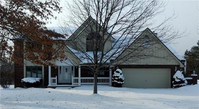 Orchard Park Single Family Home C-Continue Show: 5110 South Freeman Road
