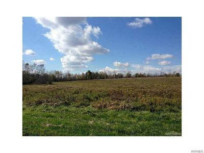 Orleans County Residential Lots & Land A-Active: Vl South Manning Road