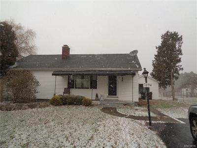 Orchard Park Single Family Home A-Active: 7294 Michael Road