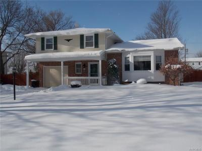Grand Island Single Family Home A-Active: 890 Baseline Road