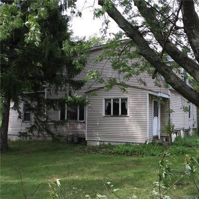 West Seneca Multi Family 2-4 A-Active: 3666 Clinton Street