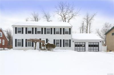 Erie County Single Family Home A-Active: 393 West Klein Road