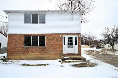Hamburg Multi Family 2-4 A-Active: 5160 Roseview Avenue